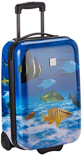 Saxoline Fish Tank Koffer - 29 Liter