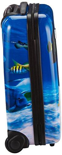 Saxoline Fish Tank Koffer – 29 Liter - 2
