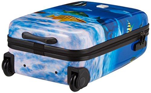 Saxoline Fish Tank Koffer – 29 Liter - 5