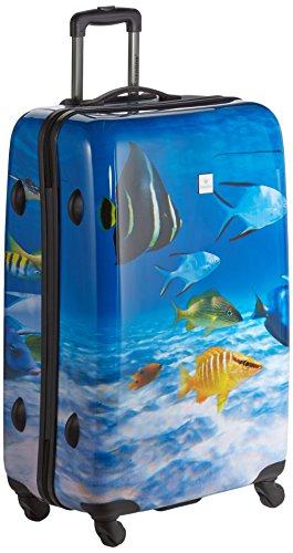 Saxoline Fish Tank - 81 Liter