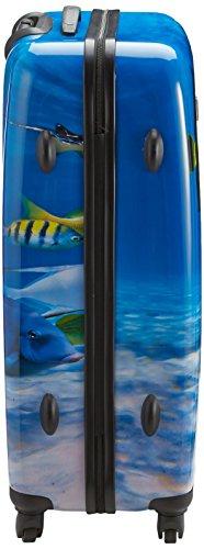 Saxoline Fish Tank – 81 Liter - 4