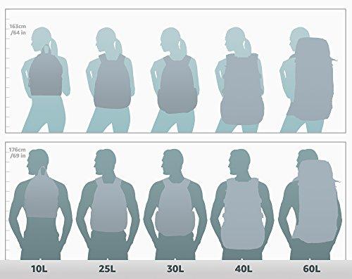 DAKINE Herren Gürteltasche Hip Pack, Black, 23 x 15 x 8 cm, 1 Liter, 08130200 - 2